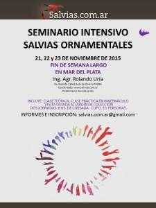 seminario 2015