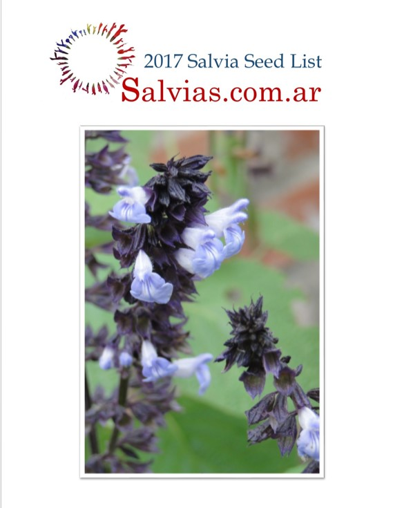 Overseas Salvia seed Catalogue